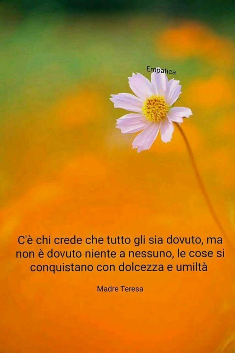 Frasi Madre Teresa-0289