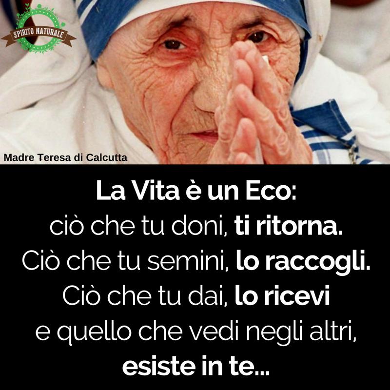 Frasi Madre Teresa-0299
